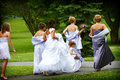 Bridal party Stock Photo