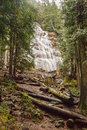 Bridal veil falls a water in a wilderness setting Royalty Free Stock Photos