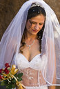 Bride Arkivbild