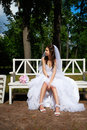 Bride bench summer park Stock Photo