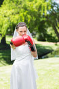 Bride with boxing gloves punching in park portrait of beautiful young Royalty Free Stock Photography