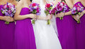 Bride and Bridemaids Royalty Free Stock Photo
