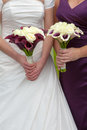 Bride and bridesmaid with wedding bouquets holding purple white Royalty Free Stock Images