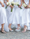 Bride and bridesmaids wedding photo of a with her holding flower bouquets Stock Photos