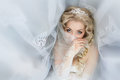 Bride close up which was covered with a veil Royalty Free Stock Photo