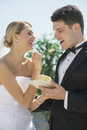 Bride feeding wedding cake to groom happy young outdoors Royalty Free Stock Image