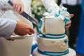 Bride and fiance a wedding cake Royalty Free Stock Photography