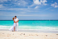 Bride and groom on beach Stock Image