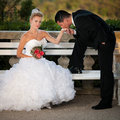 Bride and groom on a bench in a park wedding day Royalty Free Stock Photos