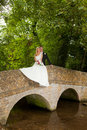 Bride and groom on a bridge Stock Photography