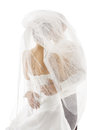 Bride and Groom Covered Veil, Wedding Couple Kissing, Back Rear Royalty Free Stock Photo