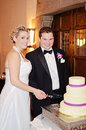 Bride and groom cutting cake a happy newlywed at reception Royalty Free Stock Photography