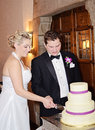 Bride and groom cutting cake a happy newlywed at reception Royalty Free Stock Photo
