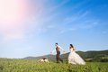Bride and groom with dog walk their beagle in the green field Stock Photography