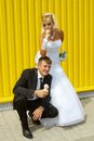 The bride and groom eat ice cream funny yellow background Royalty Free Stock Photo
