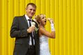 The bride and groom eat ice cream funny yellow background Royalty Free Stock Image