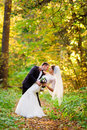 Bride and groom embrace in autumn forest standing under the branches with yellow leaves Stock Photography