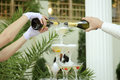 Bride groom filling glasses champagne Royalty Free Stock Image