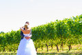Bride and groom first look a men women share a moment as outdoors at a winery vineyard in oregon Stock Photo