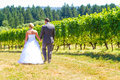 Bride and groom first look a men women share a moment as outdoors at a winery vineyard in oregon Stock Image