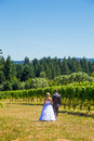 Bride and groom first look a men women share a moment as outdoors at a winery vineyard in oregon Royalty Free Stock Image