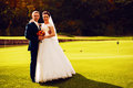 Bride and groom on golf field Royalty Free Stock Photo