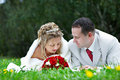 Bride and groom are on the grass Royalty Free Stock Images