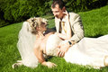 Bride and groom on the grass Stock Photos