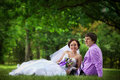 Bride and groom on grass in park Royalty Free Stock Photography