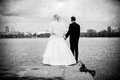 Bride and groom holding hands and looking on river black white photo of Royalty Free Stock Photography