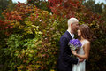 Bride and groom hug standing in a big red bush Royalty Free Stock Photo