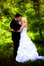 Bride and groom kiss Royalty Free Stock Image