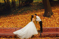 Bride and groom kiss standing on the different benches in the pa Royalty Free Stock Photo