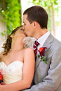 Bride and groom are kissing Stock Photos