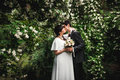 Bride and groom kissing against big bush with flowers beautiful Royalty Free Stock Photos