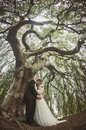 Bride and Groom  kiss inside willow tree Royalty Free Stock Photo