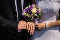 Bride and groom with rings on their hands, male and female hand with wedding rings Royalty Free Stock Photo