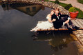 The bride and groom sit on dock Royalty Free Stock Image