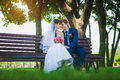 Bride and groom are sitting on the bench happy newlyweds hugging in green park Stock Photography