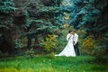 Bride And Groom Walking In Nat...
