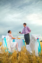Bride and groom on the wheat field Royalty Free Stock Images