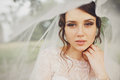 Bride with hazel eyes looks marvelous standing under a veil Stock Images