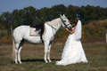 Bride with her horse patting white Stock Image