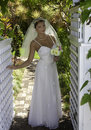 Bride on her wedding day in a tropical garden Stock Photography