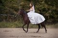Bride on horse young charming brunette in white wedding dress and tracery veil rides Royalty Free Stock Image