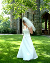 Bride on Lawn Royalty Free Stock Photo
