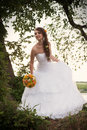 Bride looking down outdoors full length portrait of a with the bouquet standing under the tree Stock Images
