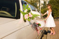 Bride is opening limousine door Stock Photos