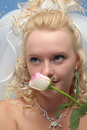 Bride and pink rose Stock Images
