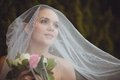 Bride portrait over green trees outdoor beautiful closeup under veil Stock Photo